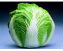 Cabbage