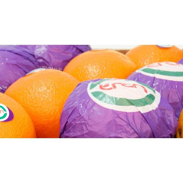 Navelina Orange